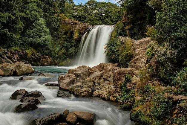 Wodospad tawhai – kaskada skalistego lasu w parku narodowym nowej zelandii