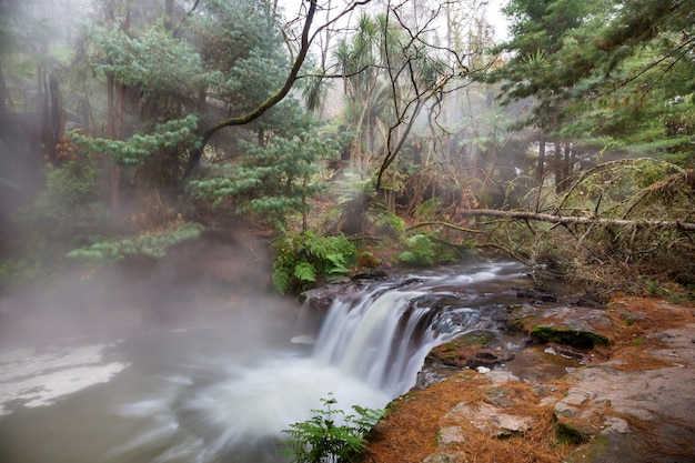 Wodospad termalny na potoku nafty, rotorua, nowa zelandia. niezwykłe naturalne krajobrazy