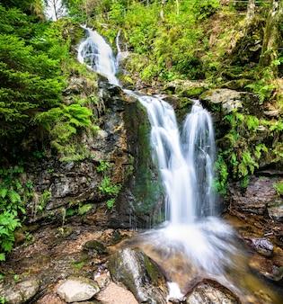 Wodospad todtnau w górach schwarzwaldu, niemcy