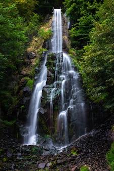Wodospad trusetaler przepływający przez las w niemczech