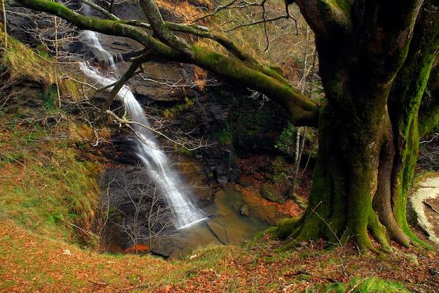 Wodospad uguna w parku narodowym gorbeia. kraj basków. hiszpania