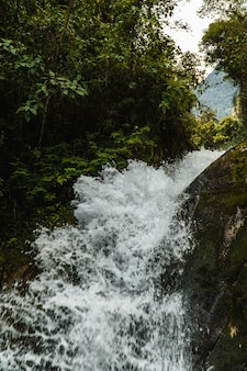 Wodospad w cloud forest w peru