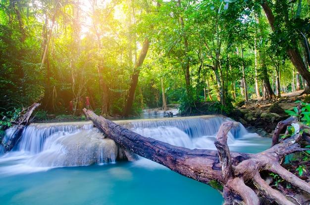 Wodospad w głębokim lesie
