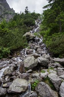 Wodospad w górach alp z kamieniami z przodu. wysokie skały zakrywające zielonymi roślinami na chmurnego nieba tle. wodospad w europejskich alpach. europa.