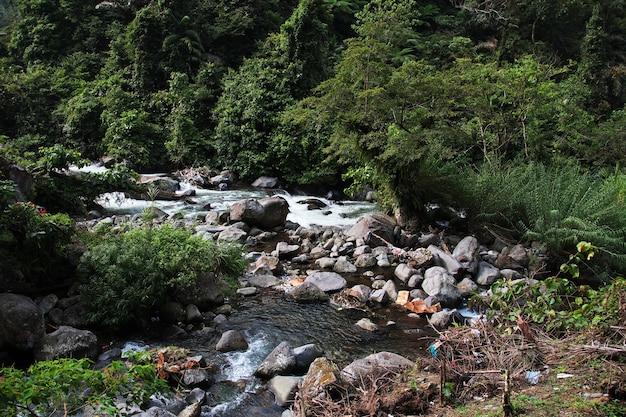 Wodospad w lesie indonezji