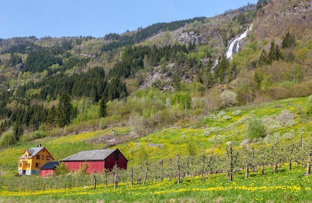 Wodospad w norwegii