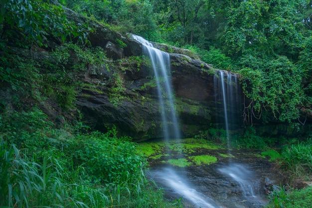 Wodospad w nuwara-eliya, sri lanka