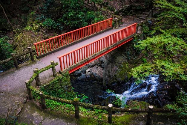 Wodospad w parku minoh. osaka, japonia