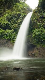 Wodospad w pięknym tropikalnym lesie deszczowym kostaryki