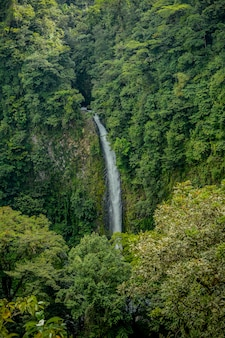 Wodospad w san carlos, kostaryka.