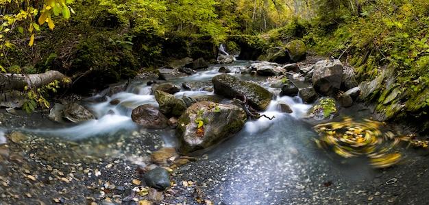 Wodospad z liśćmi na skałach na łące z płynącą wodą