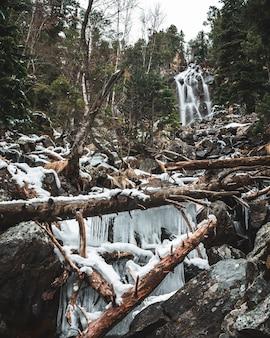 Wodospad z zwalonymi drzewami i stalaktytami w lesie