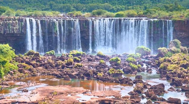 Wodospady iguazu w argentynie, widok z usta diabła, zbliżenie na potężne strumienie wody tworzące mgłę nad rzeką iguazu. subtropikalne liście w rzece iguasu.