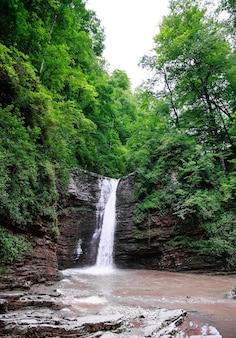 Wodospady w rzece z dużą ilością roślinności