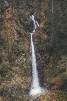 Wodospady w środku lasu w ciągu dnia