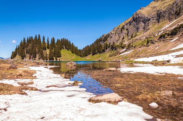 Wody jeziora lac lioson otoczone drzewami i górami w szwajcarii