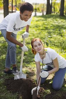 Wolontariusz środowiskowy. wesołych dwóch wolontariuszy używających łopaty i podziwiającego drzewo