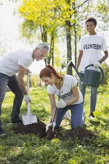 Wolontariusze godzin. wesoły trzej wolontariusze sadzą drzewa i śmieją się