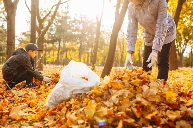 Wolontariusze sprzątający park z opadłych żółtych liści. jesienny krajobraz. ludzie odgarniają stosy liści.