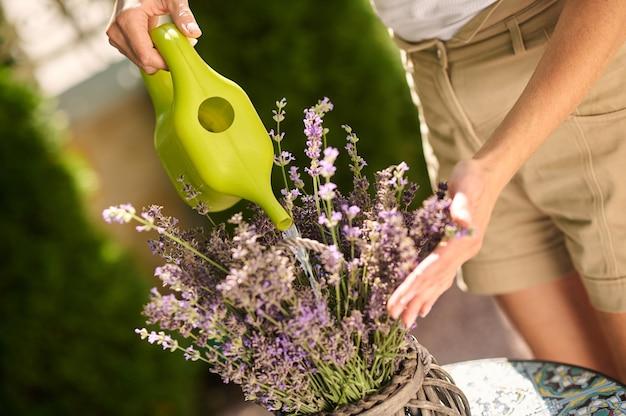 Womans ręce z konewką w pobliżu kwiatów w doniczce