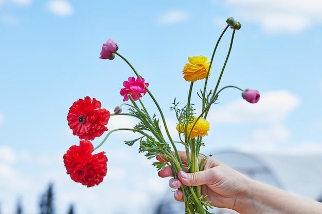 Womans ręka trzyma bukiet wielobarwnych kwiatów na tle nieba