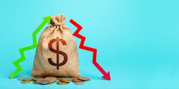 Worek pieniędzy dolara i dwie strzały utraty zysków. koncepcja wydatków na dochody.