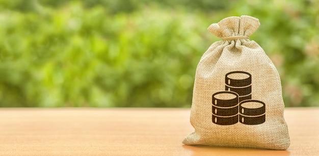 Worek pieniędzy z symbolem monety pieniądze. finanse i bankowość. przyciąganie inwestycji do rozwoju