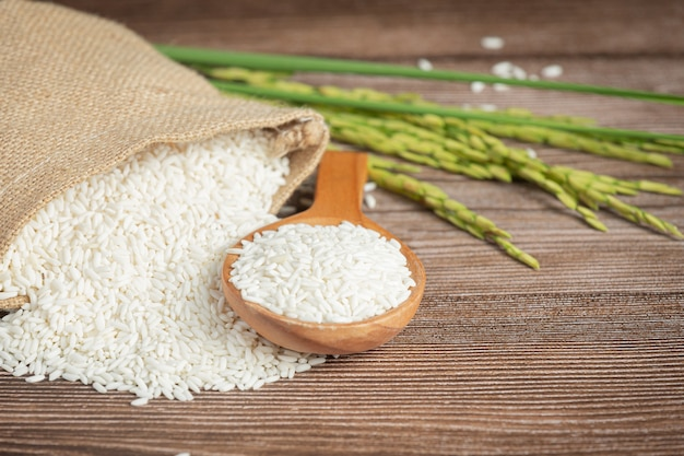 Worek ryżu z ryżem na drewnianej łyżce i roślin ryżu