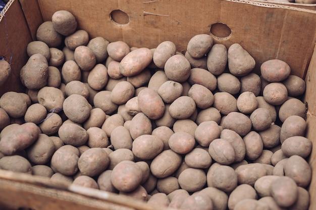 Worek surowych i brudnych ziemniaków. świeże ziemniaki z bliska w siatce.