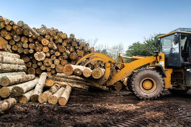 Wózek widłowy chwyta drewno w zakładzie obróbki drewna