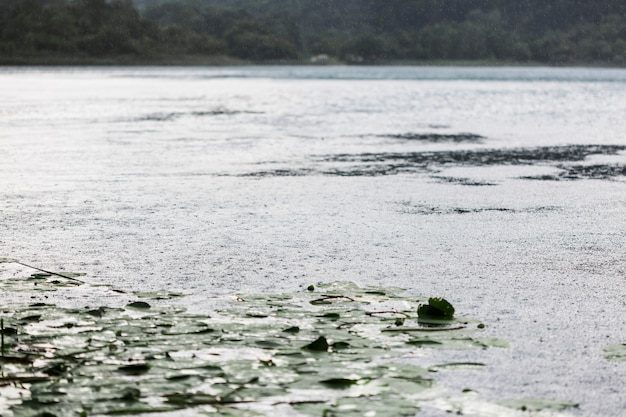 Wpływ kropli deszczu na falującą powierzchnię wody