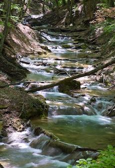 Wsady i kaskady na wiosennej górskiej rzece w ciemnym lesie. ekspozycja długoterminowa.