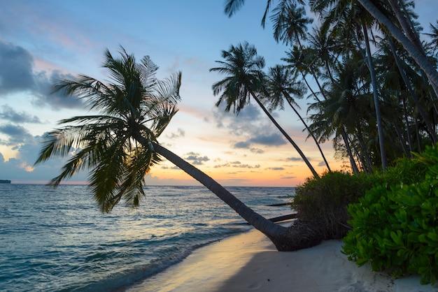Wschód słońca dramatyczny niebo na morzu, tropikalna pustynna plaża