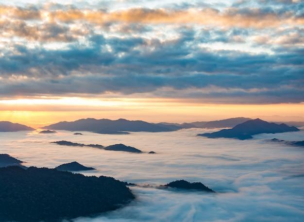 Wschód słońca i morze mgły, widok z parku leśnego phucheefa