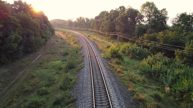 Wschód słońca na torach kolejowych w lesie.