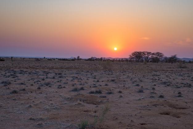 Wschód słońca nad pustynią namib, namib naukluft park narodowy, podróży miejsce przeznaczenia w namibia, afryka. poranne światło, mgła i mgła.