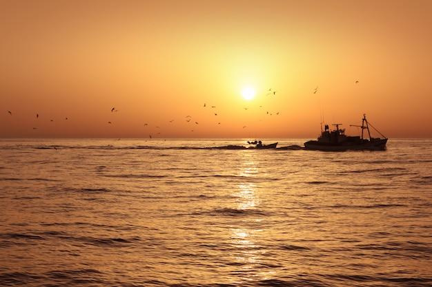 Wschód słońca rybołówstwa profesjonalnego połowu sardynek fisherboat