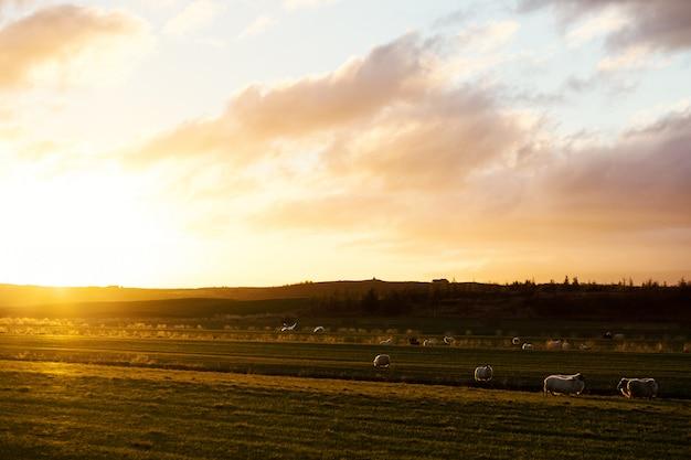 Wschód słońca w wiosce