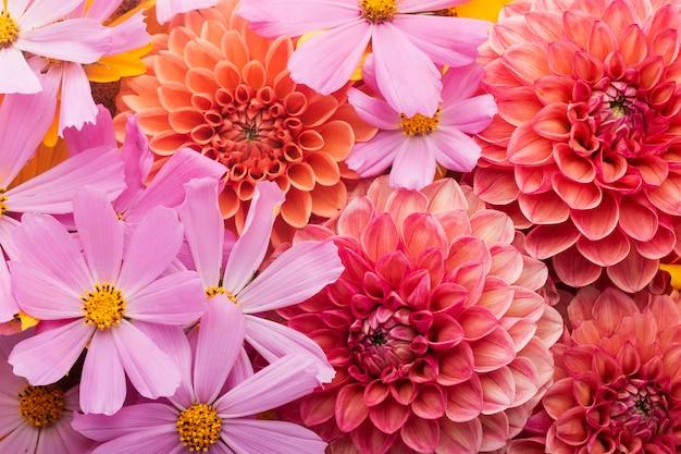 Wspaniała aranżacja tapety z kwiatami