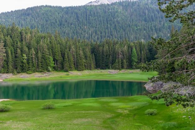 Wspaniałe czarne jezioro znajduje się w parku narodowym durmitor na północy czarnogóry.