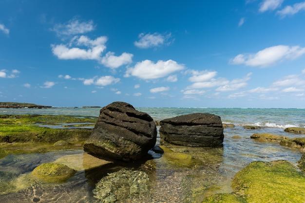 Wspaniałe skały okinawy podczas odpływu kontrastujące z błękitnym niebem i zielenią wodorostów wyspy iriomote
