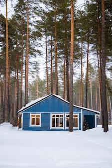 Wspaniały niebieski dom w sosnowym lesie zimą, pionowe zdjęcie. zdjęcie wysokiej jakości