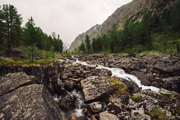 Wspaniały szybki strumień wody z lodowca w dzikim górskim potoku z dużymi mokrymi kamieniami.