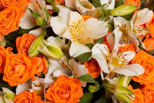 Wspaniały układ kwiatów w tle