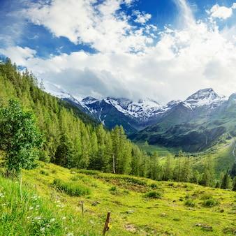 Wspaniały widok na alpy