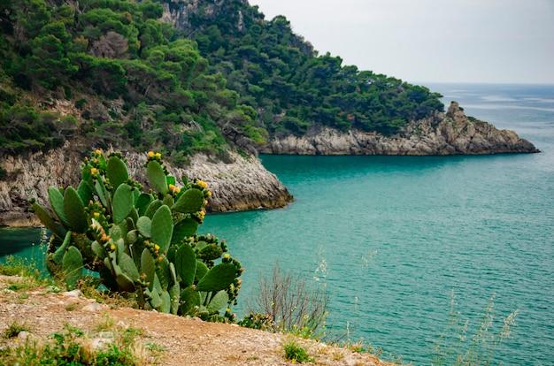 Wspaniały widok na morze ze skałami w pobliżu formia w zatoce gaeta, włochy