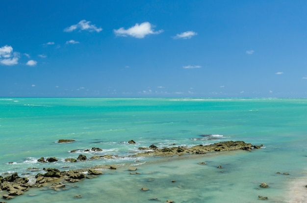 Wspaniały widok na plażę maragogi z krystalicznie czystą, błękitną wodą