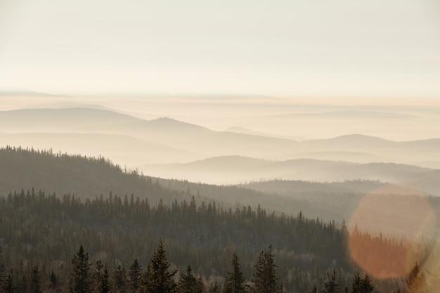 Wspaniały widok na przyrodę w mroźny zimowy poranek z mgłą zakrywającą długie łańcuchy gór i mieszany las z białym niebem powyżej