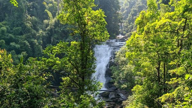 Wspaniały widok na wodospad z zielonym lasem w tajlandii