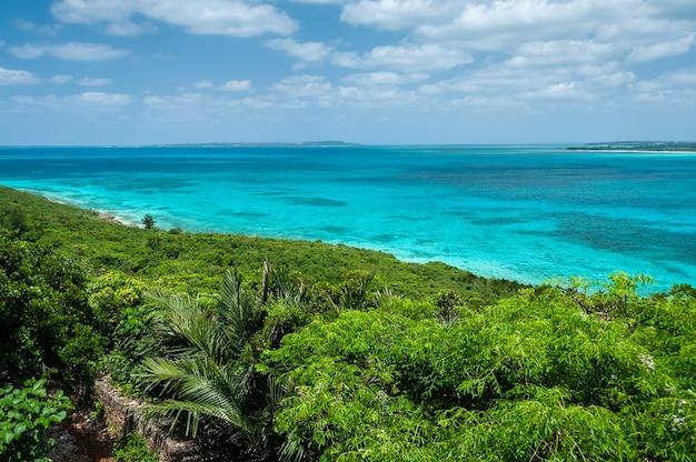Wspaniały widok z góry na krystaliczny turkusowy ocean, bardzo zielona przybrzeżna roślinność